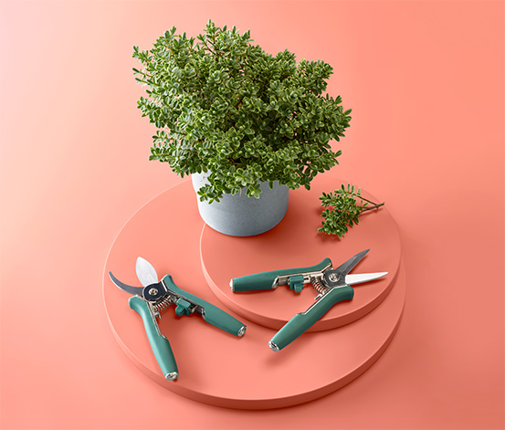 Zestaw mini sekatorów do pielęgnacji roślin