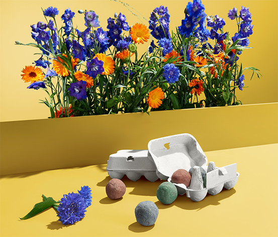Kule nasienne dzikie kwiaty, 12 sztuk